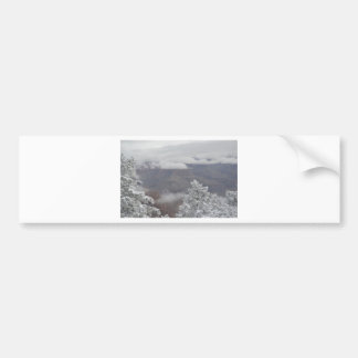 Overlook Grand Canyon National Park Mule Ride Bumper Stickers