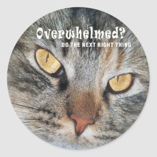overwhelmed Nellie Classic Round Sticker