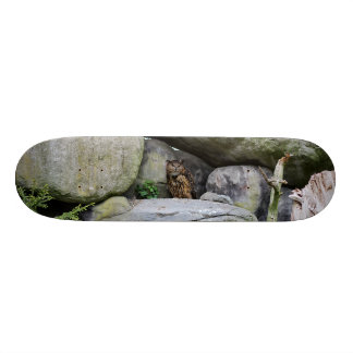 Owl 21.3 Cm Mini Skateboard Deck