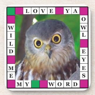 Owl-alishush Coasters