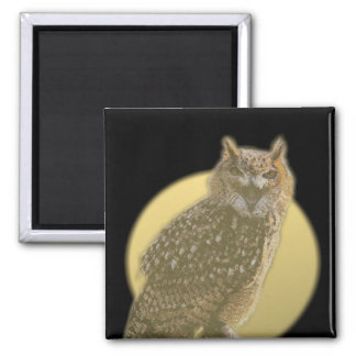 Owl and Full Moon Refrigerator Magnet