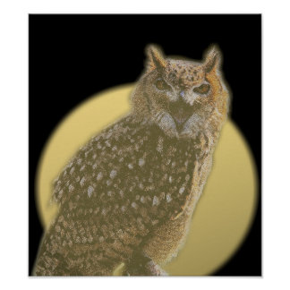 Owl and Full Moon Poster