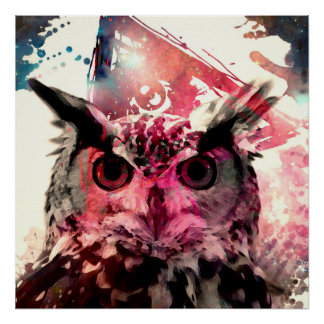 Owl and pink poster