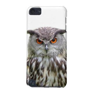 Owl animal photography case