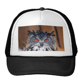 Owl Be seeing you Cap