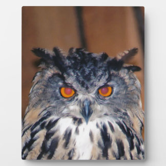 Owl Be seeing you Photo Plaque