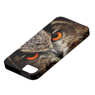 Owl Bird Feathers Wing Flight Nature Office iPhone 5 Case