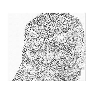 Owl canvas canvas print