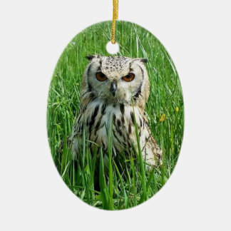 Owl Double-Sided Oval Ceramic Christmas Ornament