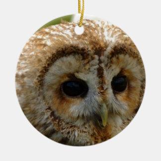 Owl Eyes Round Ceramic Decoration