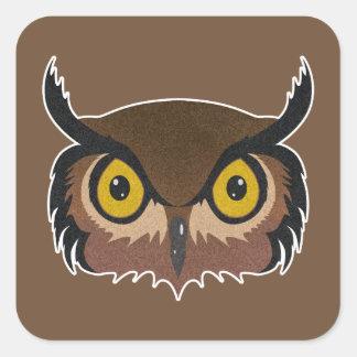 Owl Face Square Sticker