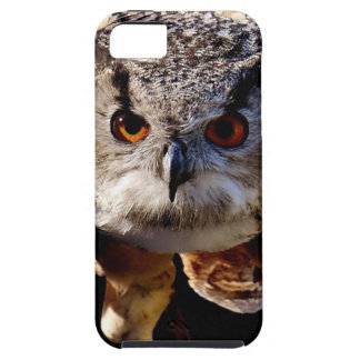 Owl Flying At Night Case For The iPhone 5