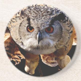 Owl Flying At Night Coaster