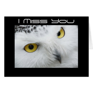 owl I miss you card