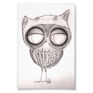 Owl in Cat-Hat Photo Print