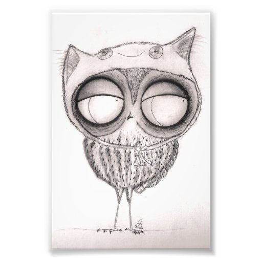Owl in Cat-Hat Photographic Print