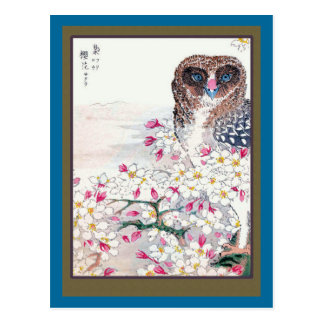 Owl in Cherry Tree Postcard