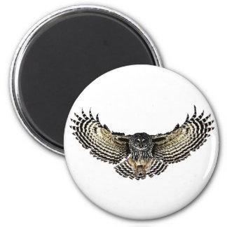 Owl in Flight Magnet