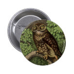 Owl in Leaves Button