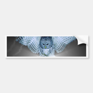 OWL in the DARK Bumper Sticker