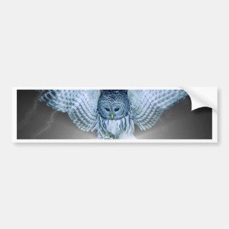 OWL in the DARK Car Bumper Sticker