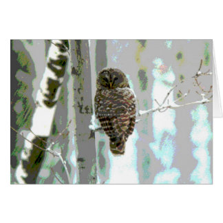 Owl In The Snow Card