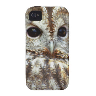 Owl iPhone Tough Case iPhone 4 Covers