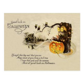 Owl Jack O' Lantern Pumpkin Tree Postcard