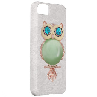 Owl Jewel & Paisley Lace iPhone 5 Case