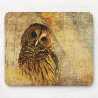 Owl Mousepad - Barred Owl