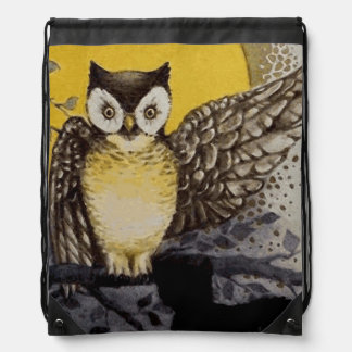 Owl on Branch In front of Moon watching black cat Drawstring Bag