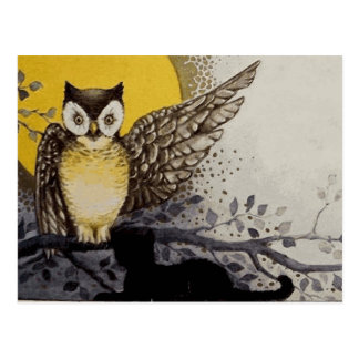 Owl on Branch In front of Moon watching black cat Postcard