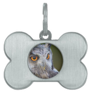 owl pet tag