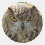 Owl Photo Stickers