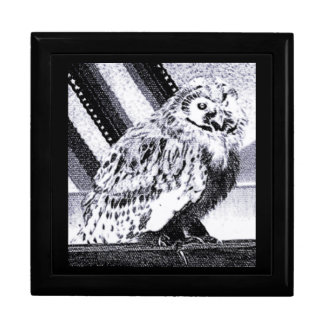 Owl Picture Gift Box