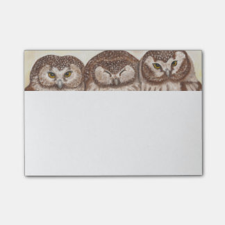 Owl post it note pad