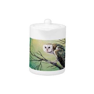 "Owl Products featuring ""Soren: Owl of Ga' Hoole"""
