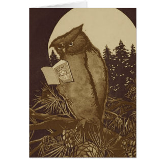 Owl  Reading by Moonlight Cards