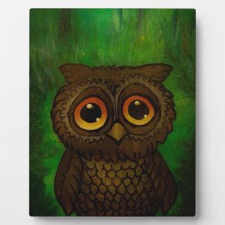 Owl sad eyes display plaques
