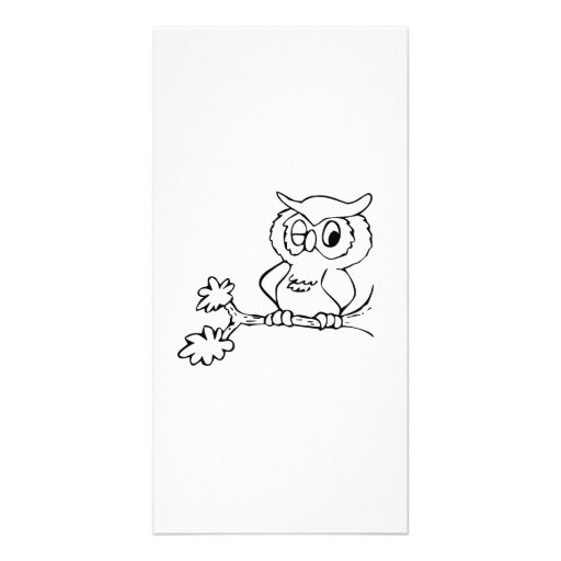 Owl Winking on Tree Branch Photo Cards