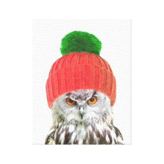 Owl with cap funny animal portrait canvas print