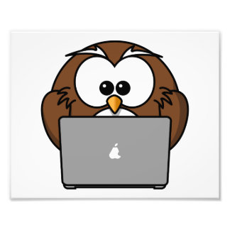 Owl With Laptop Photo