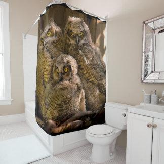 owlets shower curtain