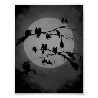 Owls and bat poster