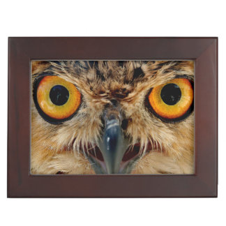 Owls Eyes Keepsake Box