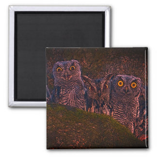 Owls in a Tree Magnet