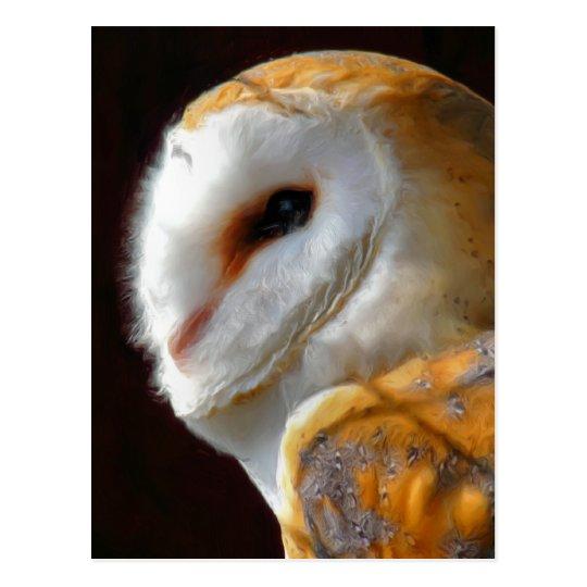 OWLS POSTCARD