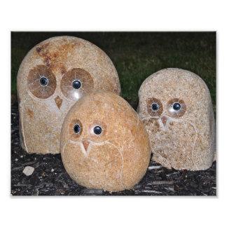 Owls Rock Art Photo