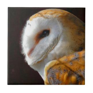 OWLS CERAMIC TILES