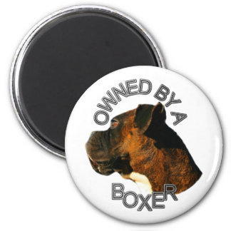 Owned by a boxer magnet